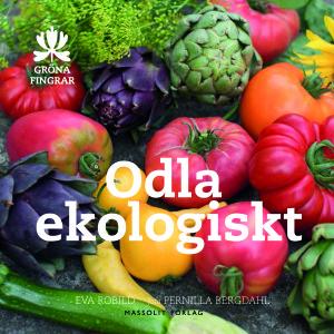 Allt fler tycker att det är självklart med ekologisk odling. Men vad bör man göra och vad ska man inte göra i en ekologisk trädgård? Eva Robild lotsar dig genom alla begrepp och ger mängder med praktiska ekotips och lustfylld inspiration för dig som vill njuta av egenodlat med gott samvete. Oavsett vilken nivå du väljer på din ekologiska odling tar du ett teg mot en giftfri mat, en bättre miljö och en hållbarare livsstil. På kuppen lär du dig mer om din trädgård - inte minst om jorden, där allting börjar, men också om dina hjälparbetare i den ekologiska trädgården: blomflugelarver, mykhorriza-svampar och några miljarder organismer till. Eva Robild Odla ekologiskt