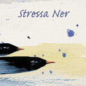 stressaner-labeltryck